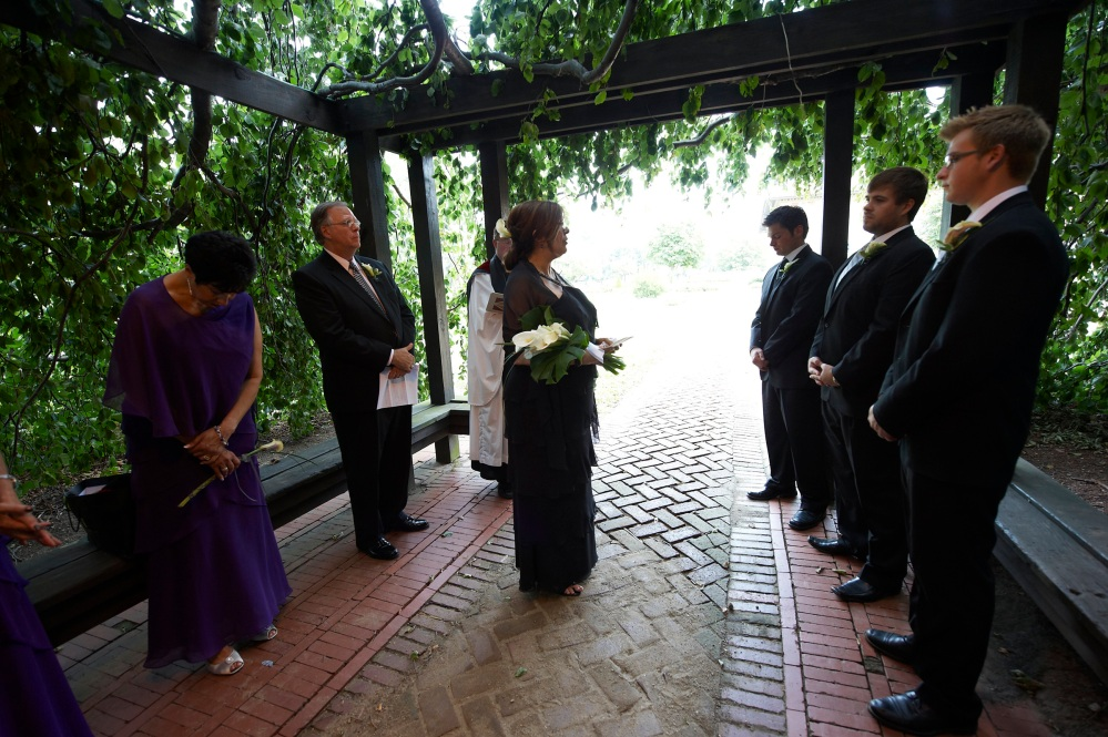 Under the Laughing Tree: Our Wedding Vows to Our Children (4/6)